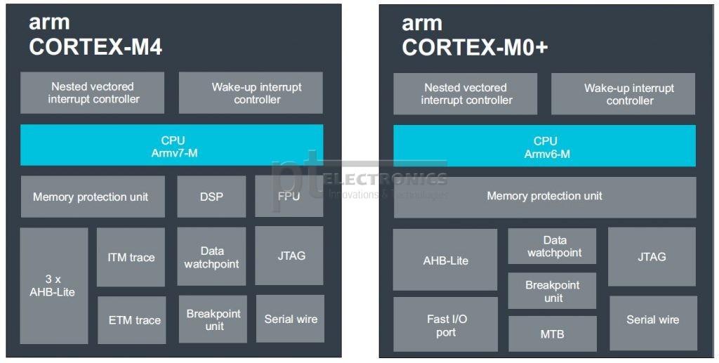 Структура ядер Cortex-M4 и Cortex-M0+