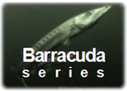 Barracuda series GE Energy