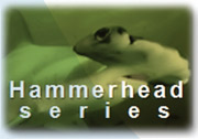 Hammerhead series GE Energy