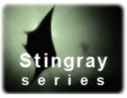 Stingray series GE Energy